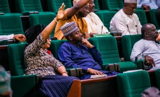 Reps vote in favour of bill on immunity for presiding officers