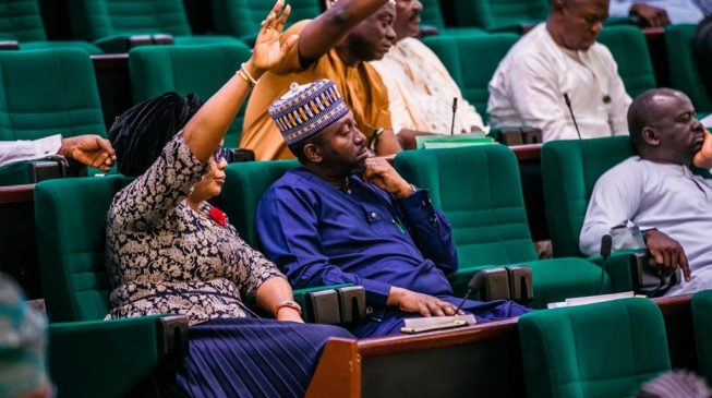 Reps vote in favour of bill empowering states to control electricity, public holidays