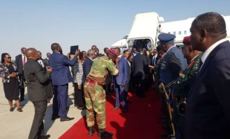 VIDEO: Mugabe's remains arrives in Zimbabwe