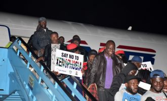 Ogun tops list of South Africa returnees