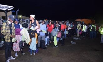 314 Nigerians arrive from South Africa