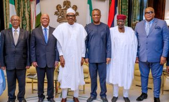 PHOTOS: Buhari receives South African envoy at Aso Rock