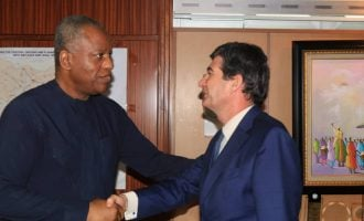 Nigeria's security very important to Spain, says envoy