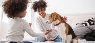 The health benefits of owning a pet