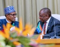 Buhari to Nigerians: Do businesses that South Africans will accept