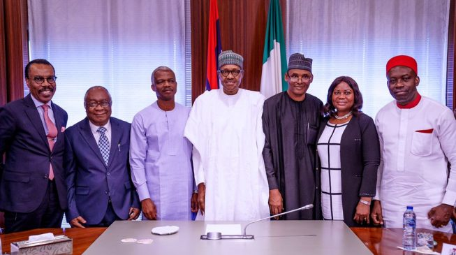 'We need home-grown solutions' — Buhari tells economic advisory council
