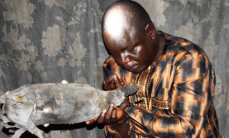 EXTRA: 'Fake' native doctor remanded in prison