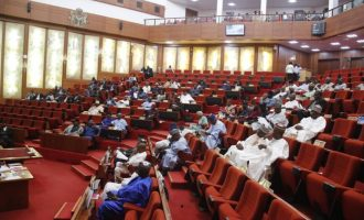 Senate asks FG to declare state of emergency on unemployment