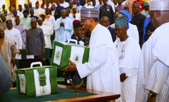 Otunuga: On paper, 2020 budget can improve Nigeria's economy