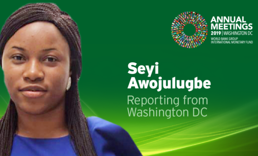Follow TheCable for updates of Nigeria's activities at IMF/World Bank annual meetings