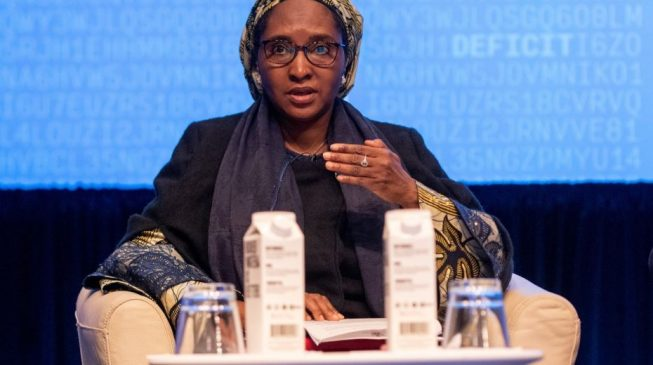 Zainab Ahmed: Why we are seeking $3bn power loan from World Bank