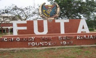 'They should be jailed' — video of FUTA students assaulting their colleague sparks outrage