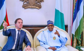 Nigeria seals deal with Netherlands for diary chain development