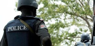 Police arrest Benue student for 'killing lecturer'
