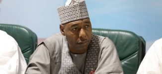 Zulum asks researchers to probe high rate of kidney failure cases in Borno