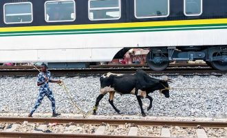 IN PICTURES: What you need to know about Lagos-Ibadan trains