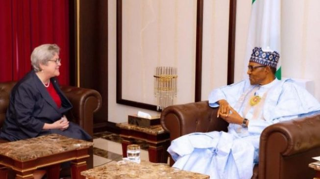 Buhari asks US ambassador to ignore 'false narratives' about Nigeria