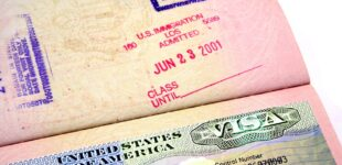 American Visa ban as Nigeria's madman in custody of mother's corpse