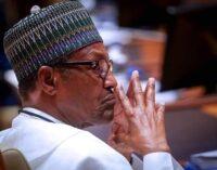 NIPOST vs FIRS, Pantami vs Dabiri-Erewa — the social media fights in Buhari's govt