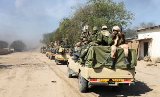 Garba Shehu: No need for panic over withdrawal of Chadian troops