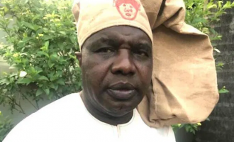 OPC faction: South-west governors recruiting political thugs for regional outfit