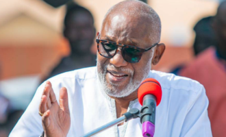 2023 presidency: South won't support any party that fields northern candidate, says Akeredolu