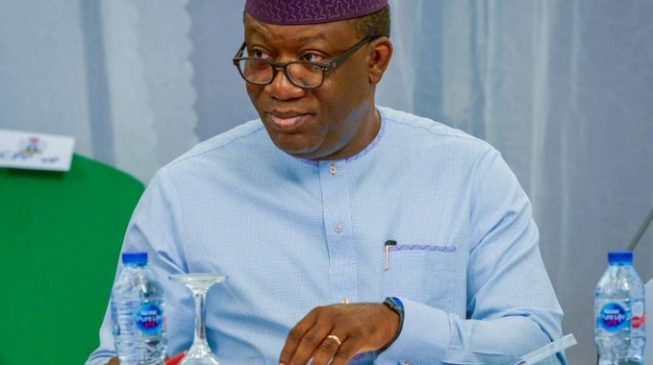 My parents thought I wouldn't live long, says Fayemi as he clocks 55