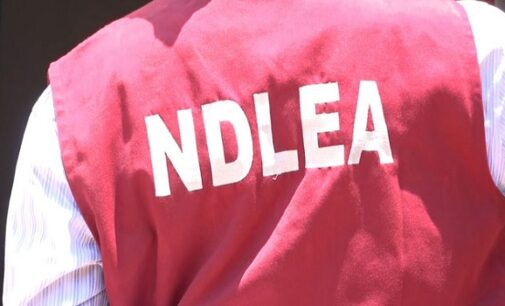 NDLEA foils attempt to smuggle tramadol to Turkey