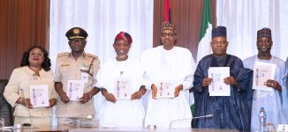 FG introduces multiple-entry visa for Nigerians who renounced citizenship