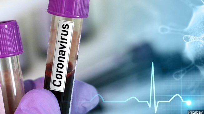 Oyo records first coronavirus case — total number of patients in Nigeria now 23