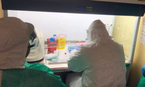 NCDC confirms 296 new COVID-19 infections — 183 in Plateau