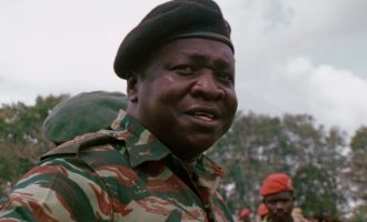 Insult as treason and other Nigerian Idi Amin Dada stories