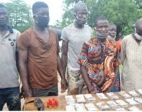 Suspect: I lied to my wife that Oyo cleric's kidnapped twins were my friend's kids