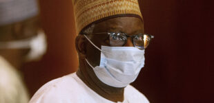 There was a burglary attempt on Gambari's residence, says presidency