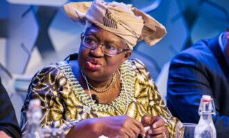 'She'll be first American woman to lead WTO' — US leaders write Biden to back Okonjo-Iweala