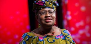 Okonjo-Iweala makes shortlist of five for WTO DG job