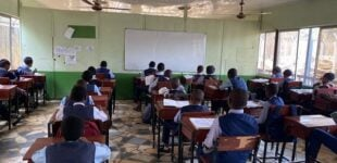 COVID-19: Kano directs private schools to slash third term fees by 30%
