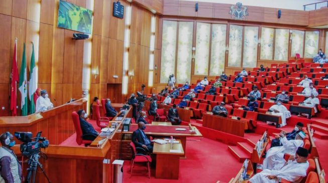 Senate asks labour ministry to review age limit for unemployed