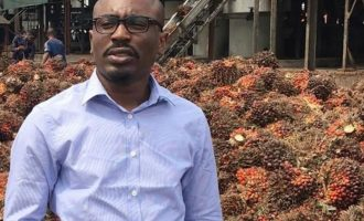 Awofisayo: Agriculture requires patient capital