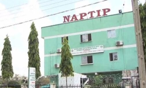 NAPTIP: We've rescued over 18,000 trafficked victims