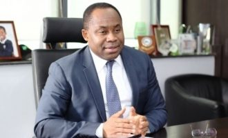 NSIA grows net income by 24% as sovereign wealth savings hit $1.75bn