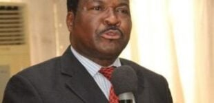 Ozekhome: The former service chiefs failed massively