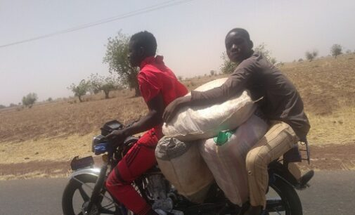 UNDERCOVER INVESTIGATION: How smugglers use donkeys, camels, motorbikes to aid movement of contraband