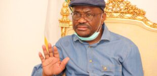 Edo guber: Without thugs, APC will be beaten silly, says Wike
