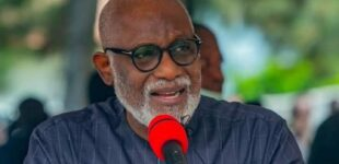 Akeredolu: I want Ondo to pay salaries without relying on federal allocation