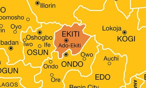 'Only seven doctors work in 131 health centres in Ekiti'