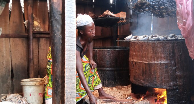 Women who feed Lagos: How lack of education robs fish traders of booming digital market