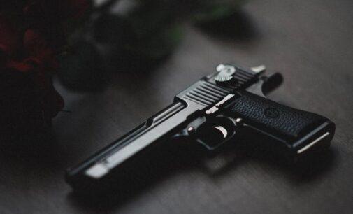 Women, babies abducted as gunmen break into Kaduna hotel