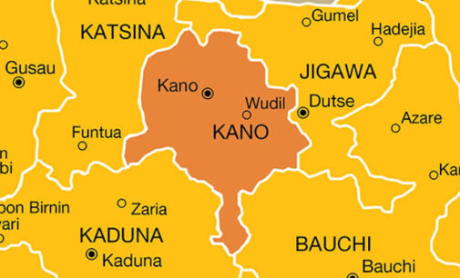Police arrest man 'who robbed over 1,000 houses' in Kano