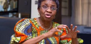 NAFDAC must approve COVID-19 vaccine before public use, says DG